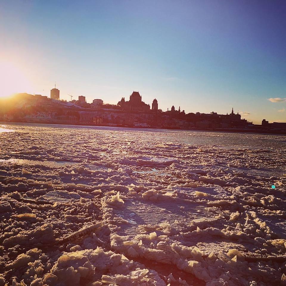 Saucette hivernale dans le fleuve St-Laurent